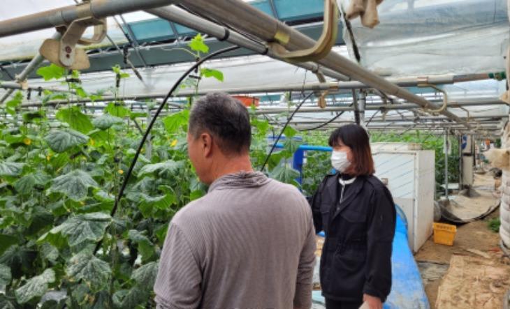 [미래농업과]5일 시설 농가에서 열린 현장심사 모습.jpg